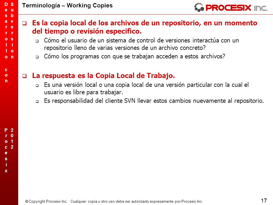 Terminología – Working Copies