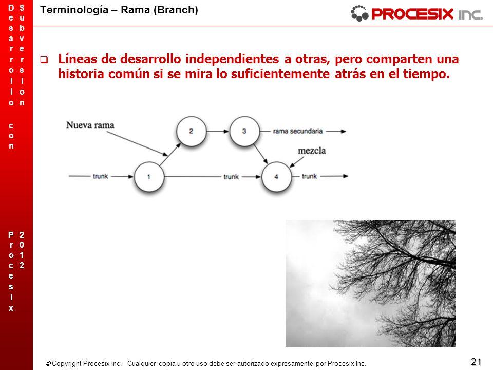Terminología – Rama (Branch)