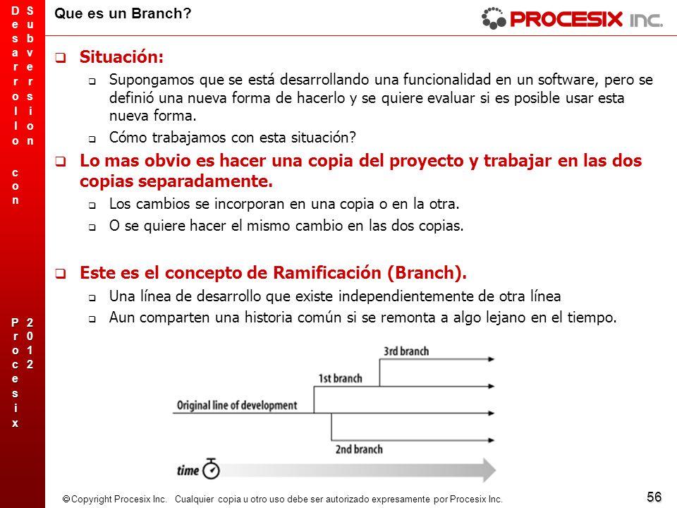 Este es el concepto de Ramificación (Branch).