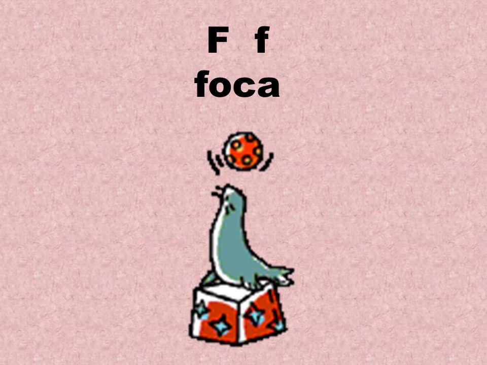 F f foca