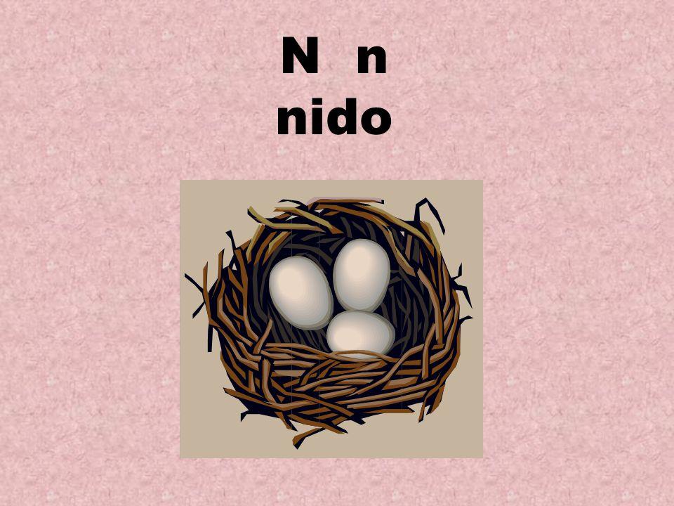 N n nido
