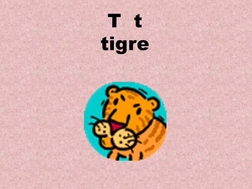 T t tigre