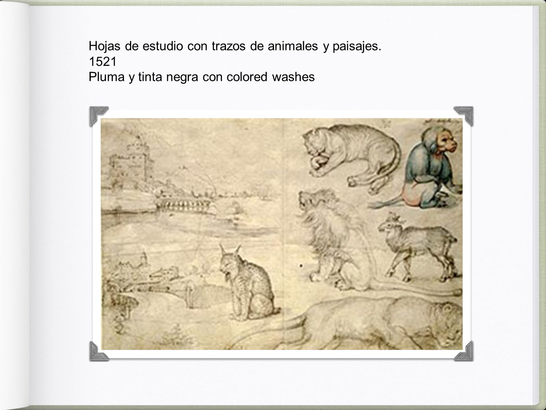 Hojas de estudio con trazos de animales y paisajes