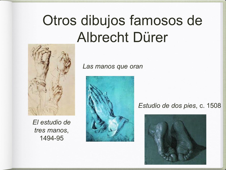 Otros dibujos famosos de Albrecht Dürer