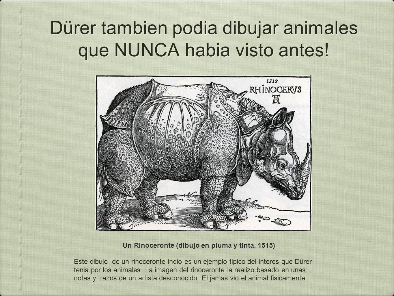 Dürer tambien podia dibujar animales que NUNCA habia visto antes!