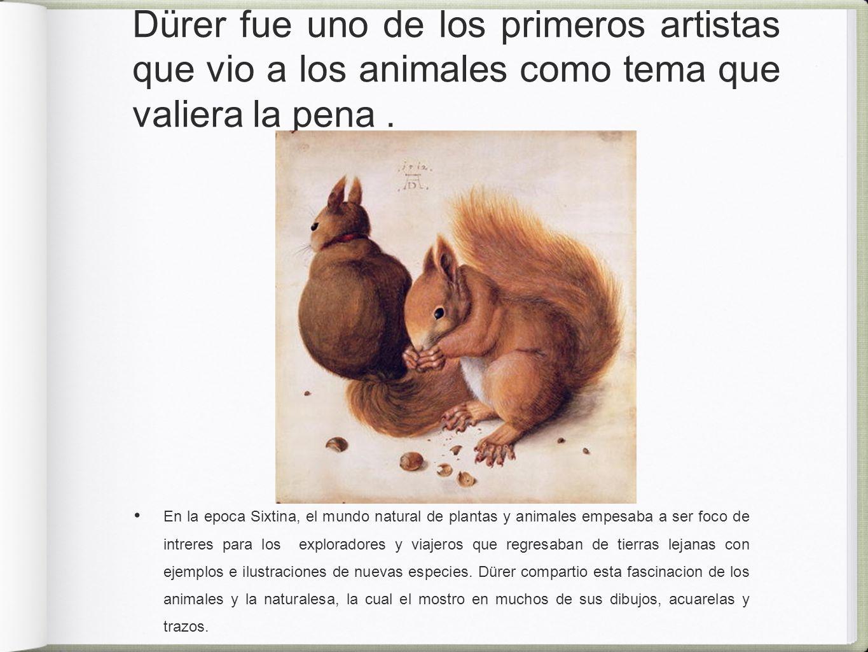 Dürer fue uno de los primeros artistas que vio a los animales como tema que valiera la pena .