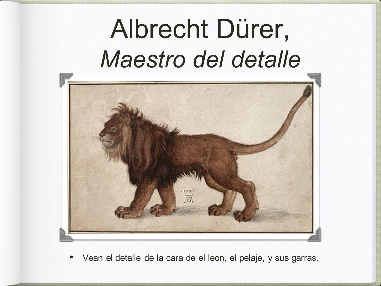 Albrecht Dürer, Maestro del detalle