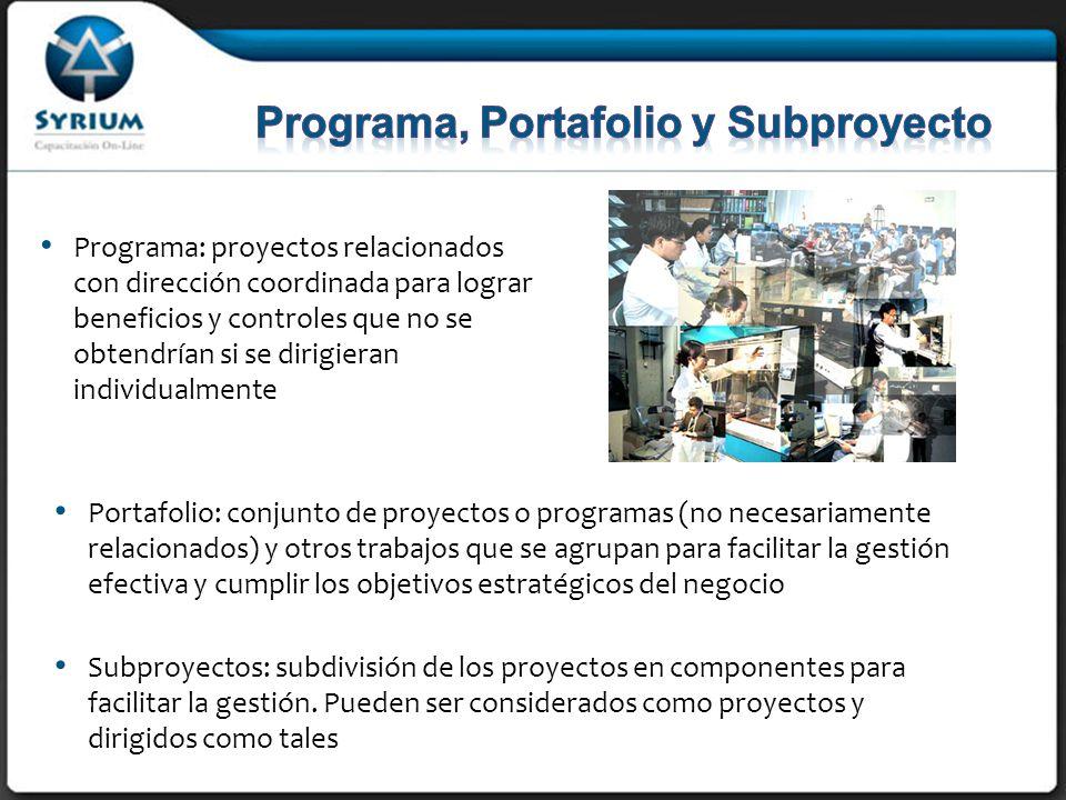 Programa, Portafolio y Subproyecto