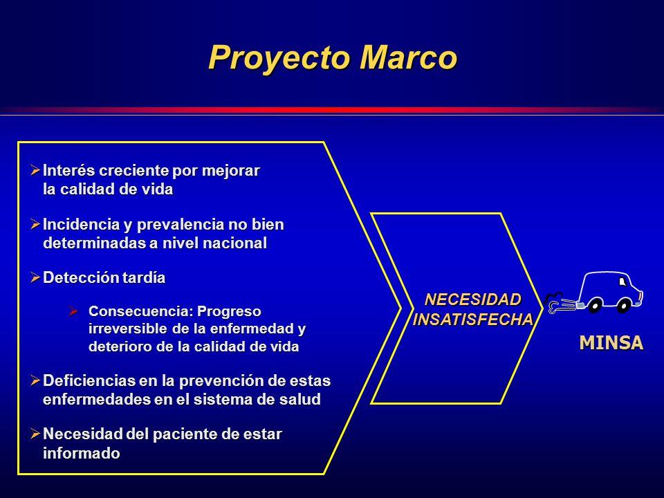 Proyecto Marco MINSA NECESIDAD INSATISFECHA