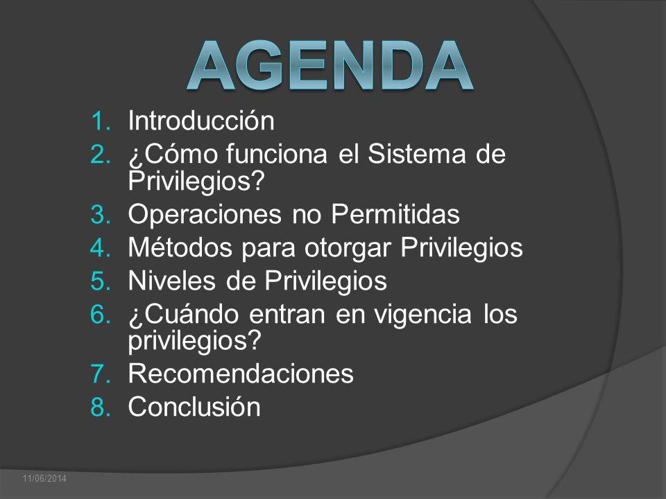 Agenda Introducción ¿Cómo funciona el Sistema de Privilegios