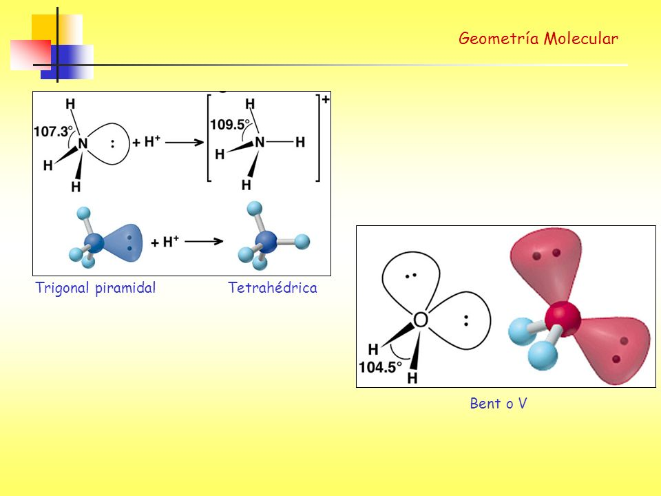 Geometría Molecular Bent o V Trigonal piramidal Tetrahédrica