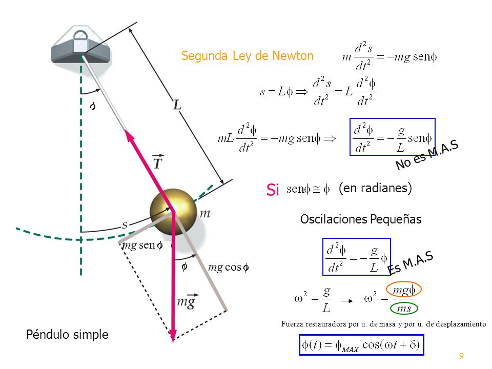 Si Segunda Ley de Newton No es M.A.S (en radianes)
