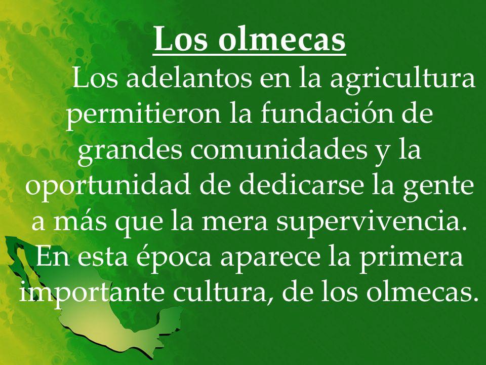 Los olmecas Los adelantos en la agricultura permitieron la fundación de grandes comunidades y la oportunidad de dedicarse la gente a más que la mera supervivencia.