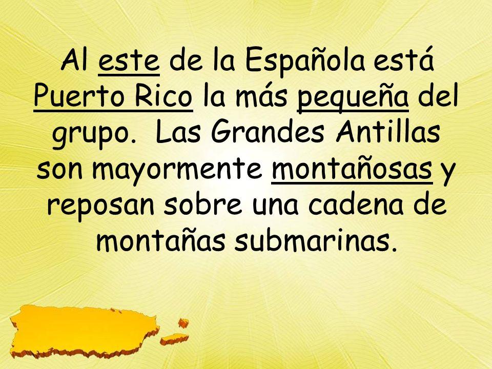 Al este de la Española está Puerto Rico la más pequeña del grupo
