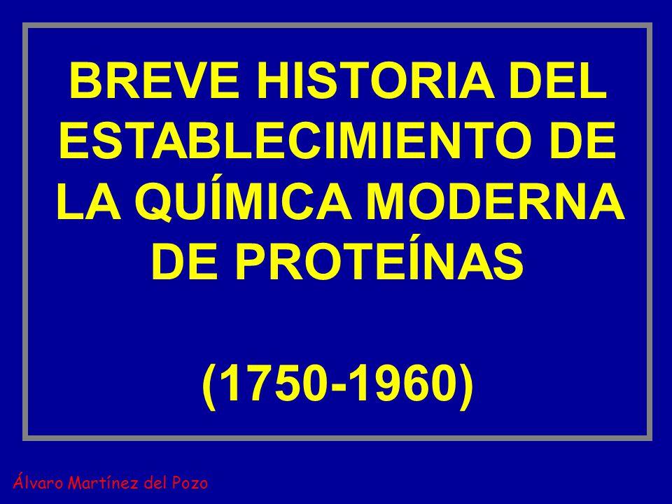 BREVE HISTORIA DEL ESTABLECIMIENTO DE LA QUÍMICA MODERNA DE PROTEÍNAS