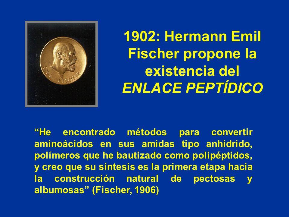 1902: Hermann Emil Fischer propone la existencia del