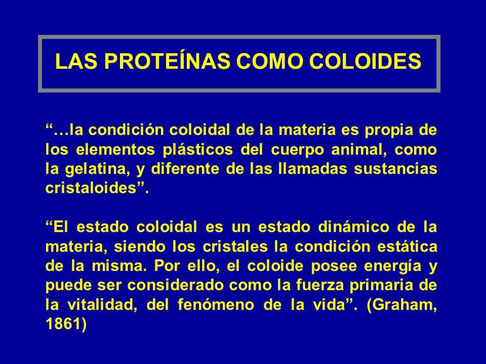 LAS PROTEÍNAS COMO COLOIDES