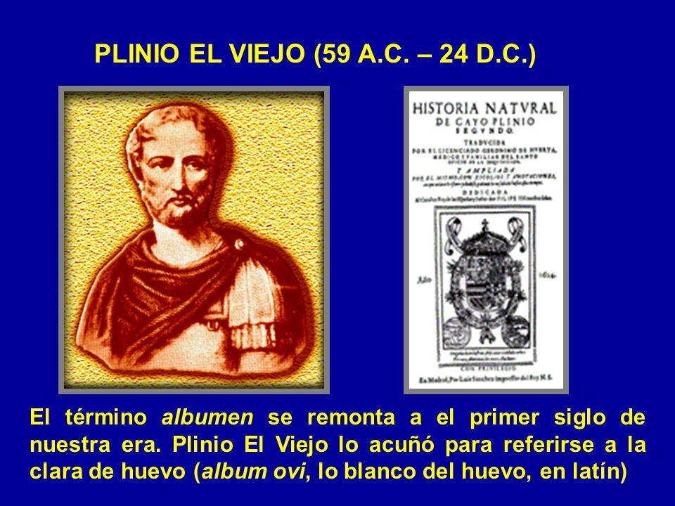PLINIO EL VIEJO (59 A.C. – 24 D.C.)