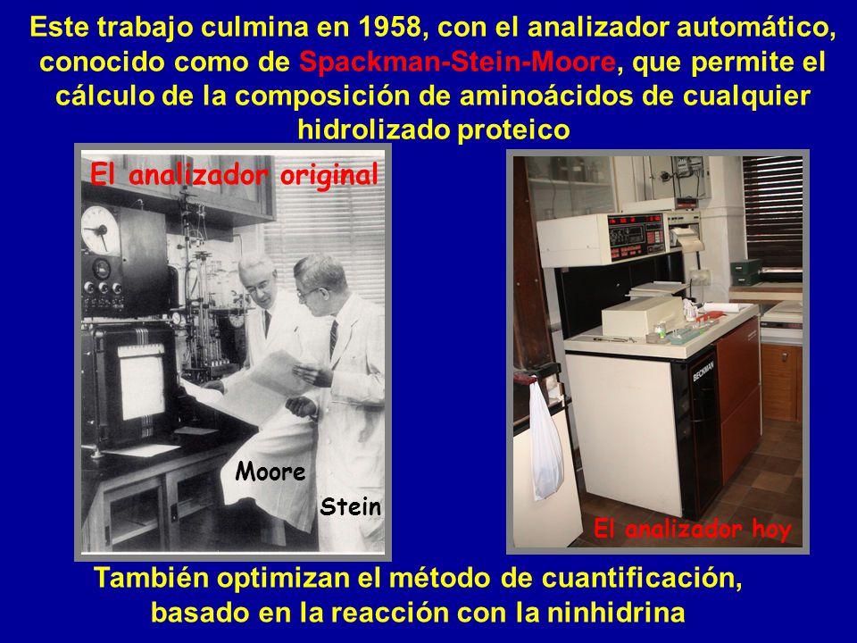 El analizador original