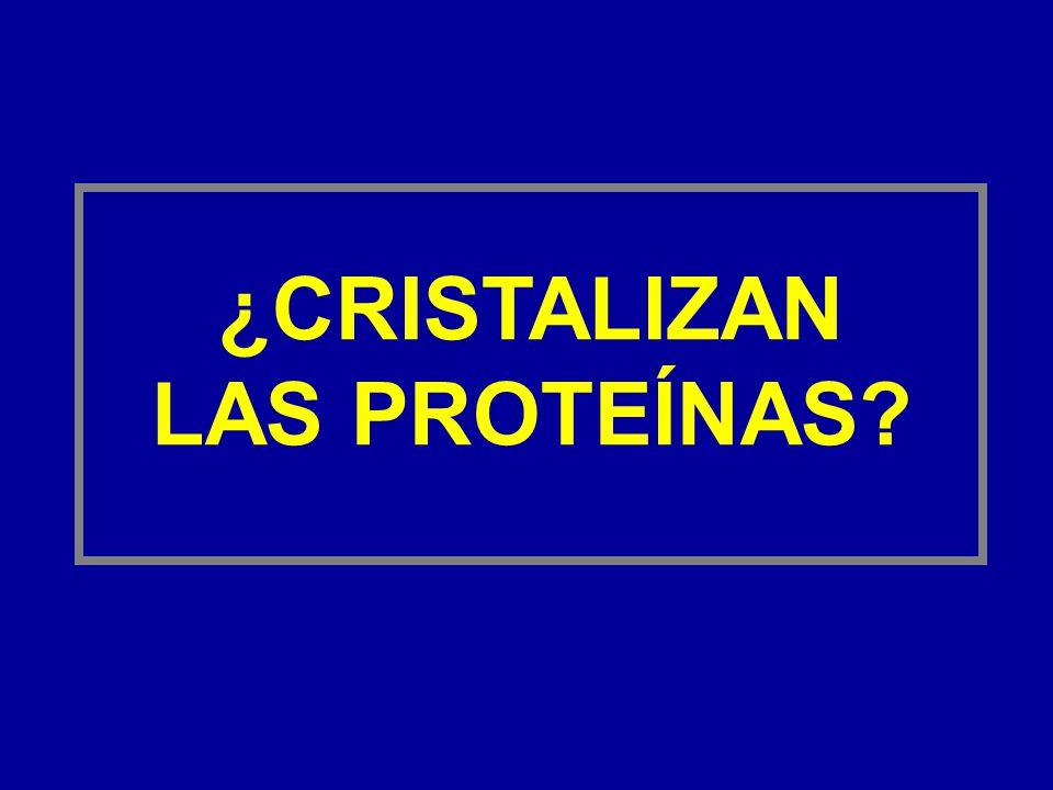 ¿CRISTALIZAN LAS PROTEÍNAS