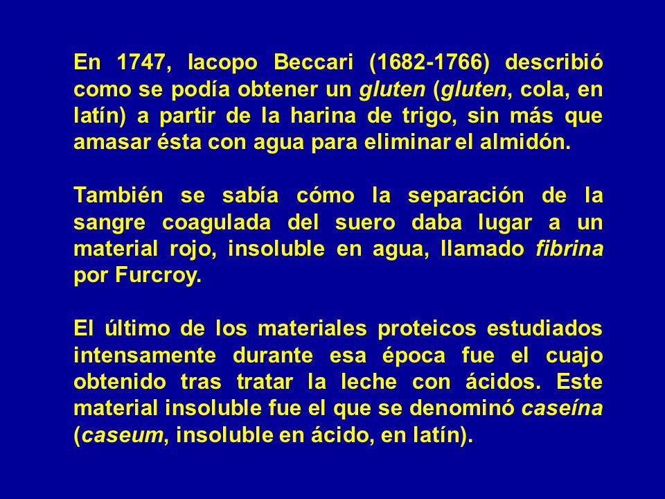 En 1747, Iacopo Beccari (1682-1766) describió como se podía obtener un gluten (gluten, cola, en latín) a partir de la harina de trigo, sin más que amasar ésta con agua para eliminar el almidón.