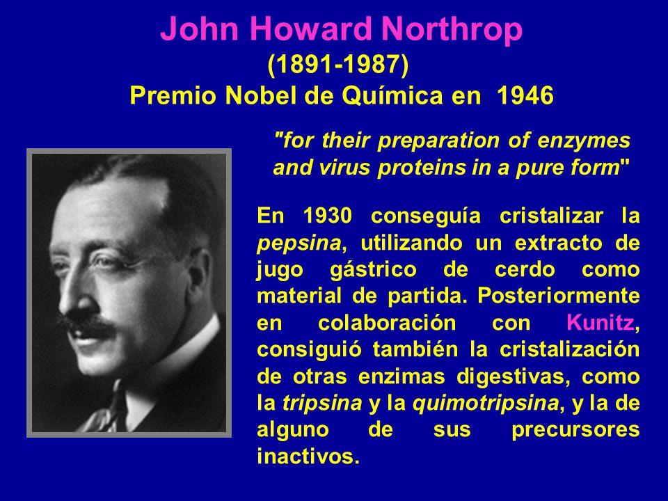 Premio Nobel de Química en 1946