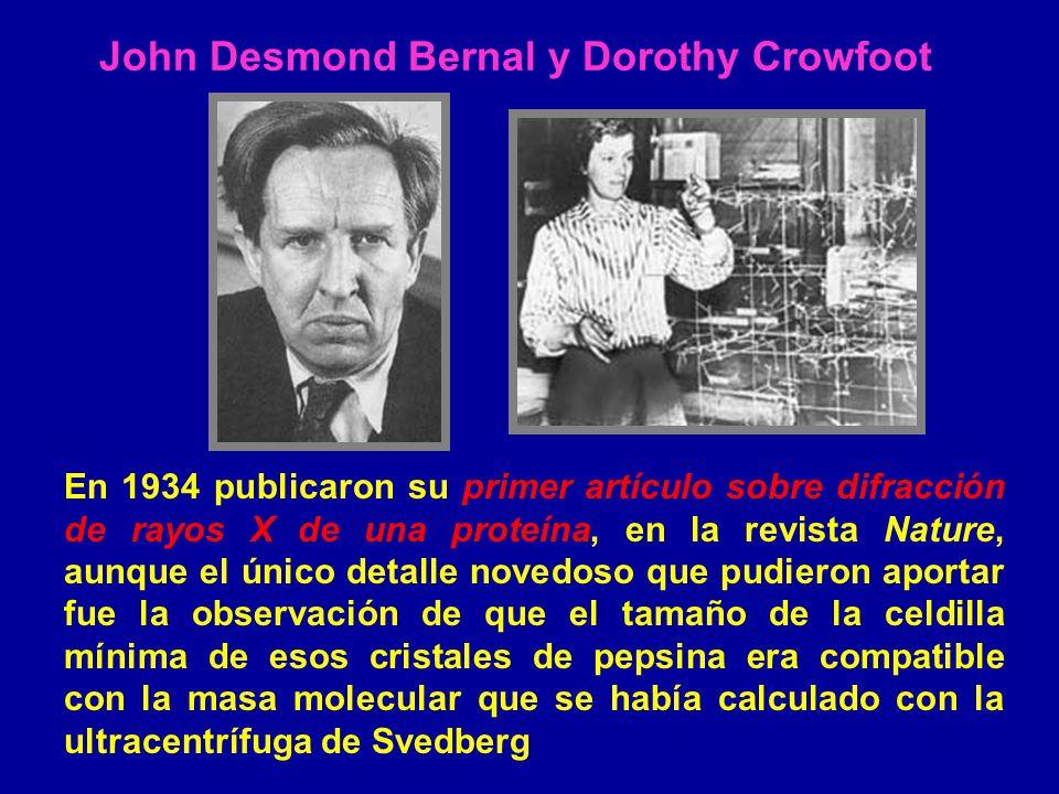 John Desmond Bernal y Dorothy Crowfoot