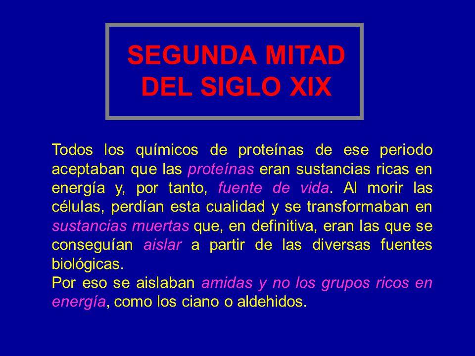 SEGUNDA MITAD DEL SIGLO XIX