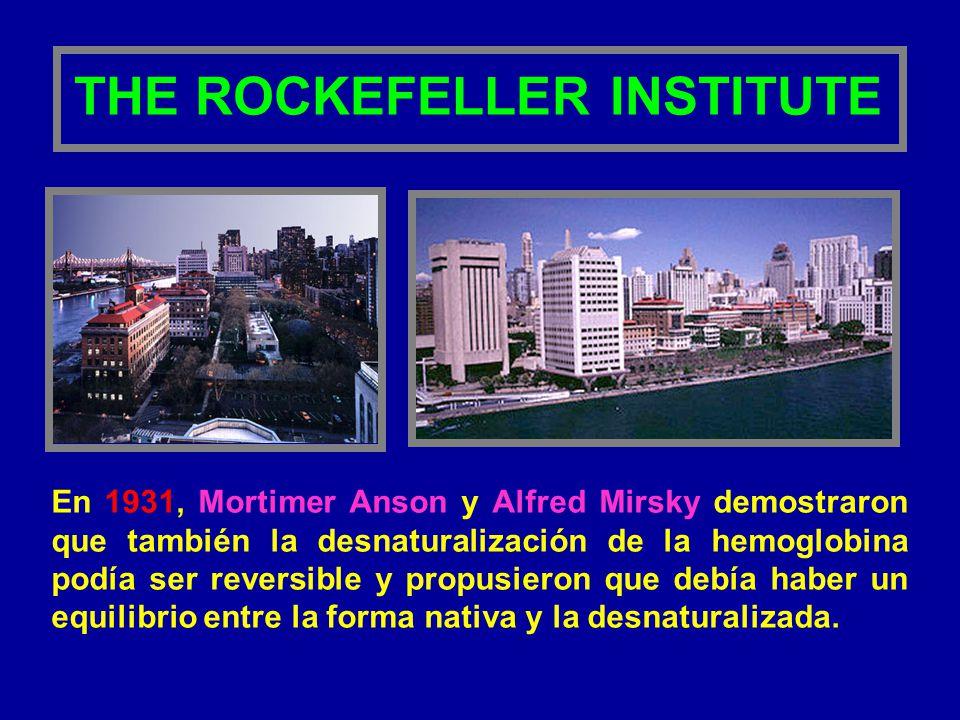 THE ROCKEFELLER INSTITUTE