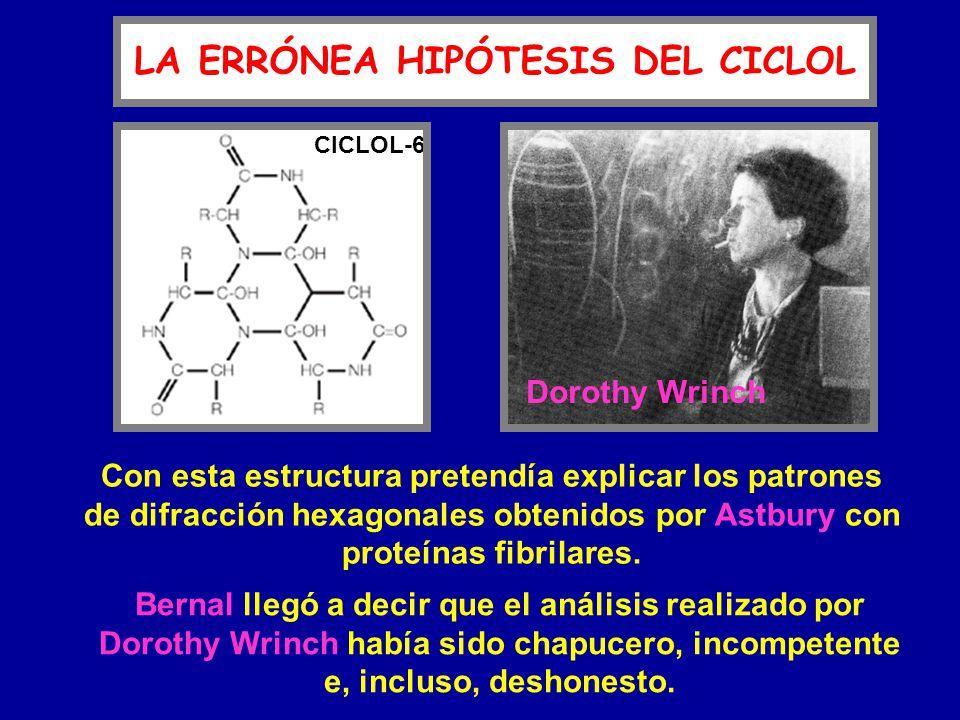LA ERRÓNEA HIPÓTESIS DEL CICLOL