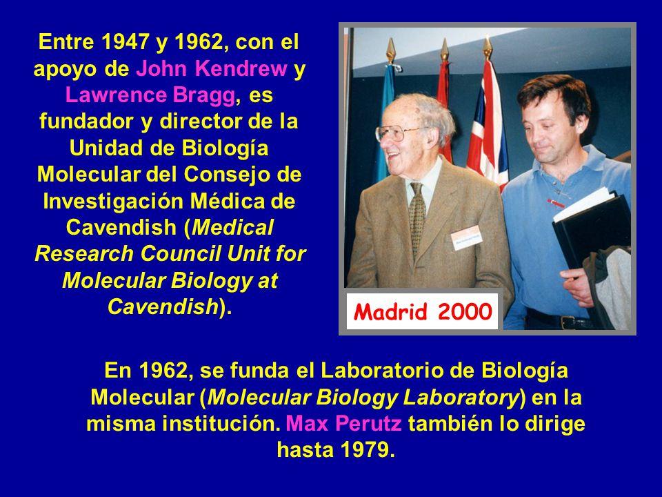 Entre 1947 y 1962, con el apoyo de John Kendrew y Lawrence Bragg, es fundador y director de la Unidad de Biología Molecular del Consejo de Investigación Médica de Cavendish (Medical Research Council Unit for Molecular Biology at Cavendish).