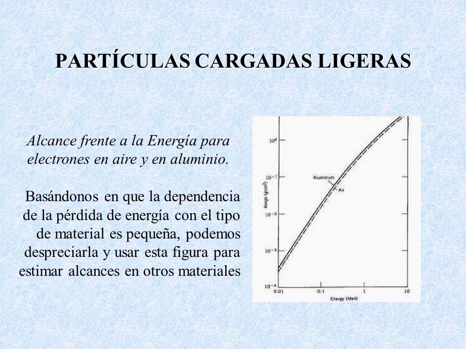PARTÍCULAS CARGADAS LIGERAS