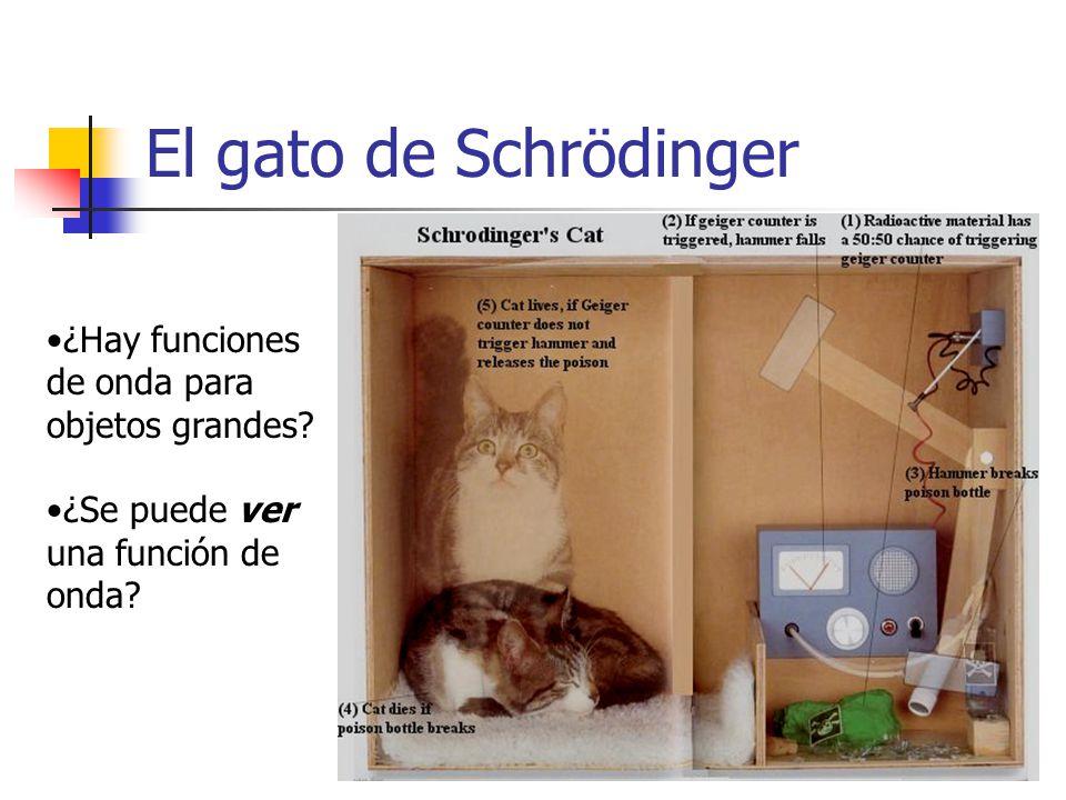 El gato de Schrödinger ¿Hay funciones de onda para objetos grandes