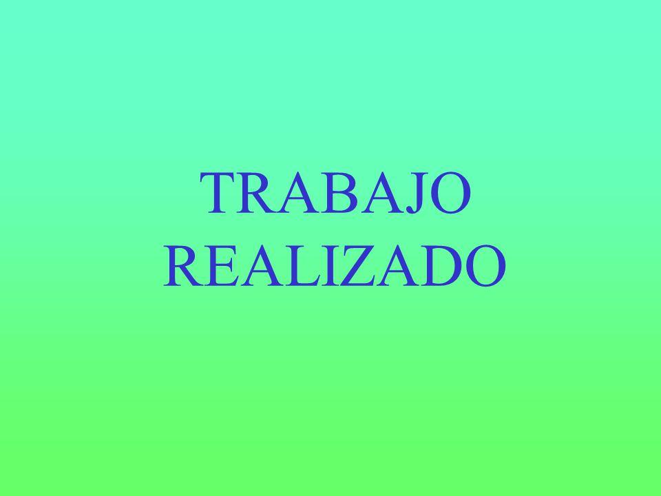 TRABAJO REALIZADO