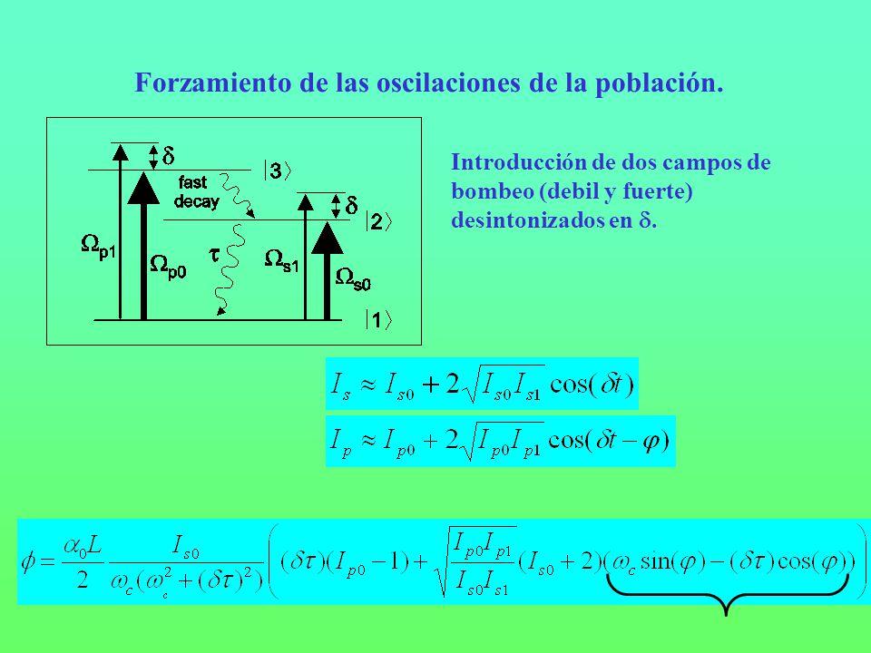 Forzamiento de las oscilaciones de la población.
