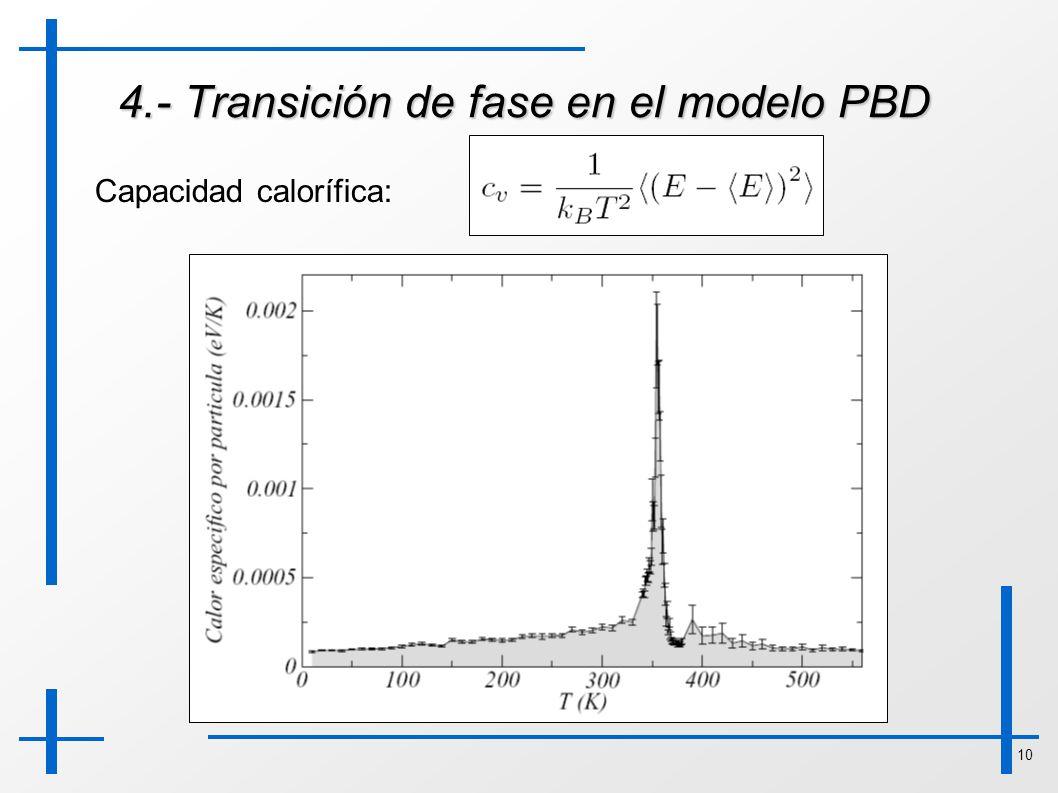 4.- Transición de fase en el modelo PBD