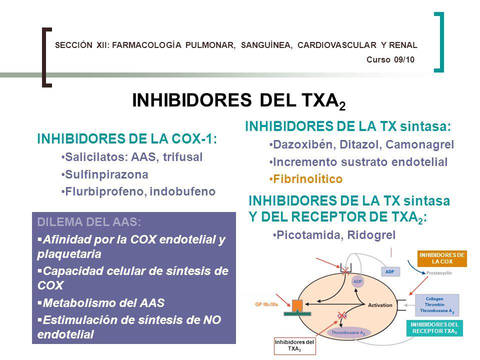 INHIBIDORES DEL RECEPTOR TXA2