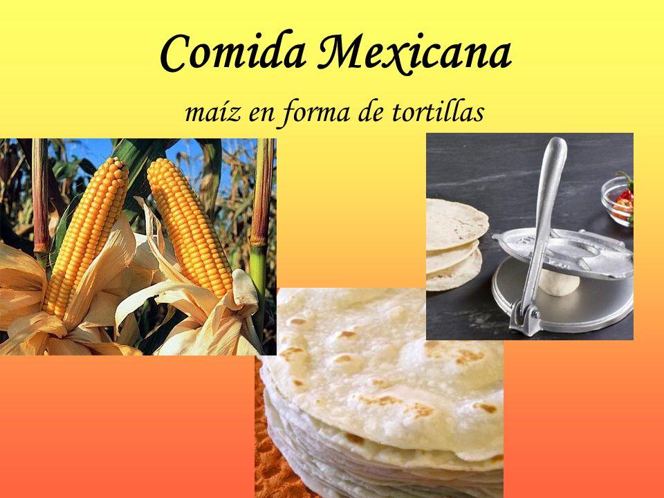 maíz en forma de tortillas