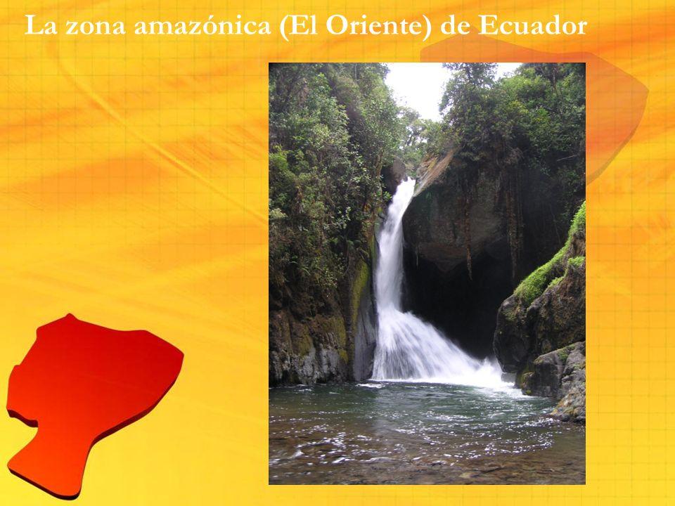 La zona amazónica (El Oriente) de Ecuador