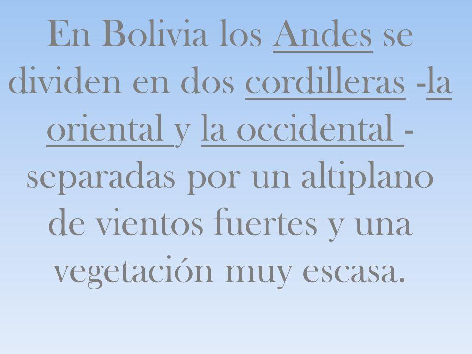 En Bolivia los Andes se dividen en dos cordilleras -la oriental y la occidental -separadas por un altiplano de vientos fuertes y una vegetación muy escasa.