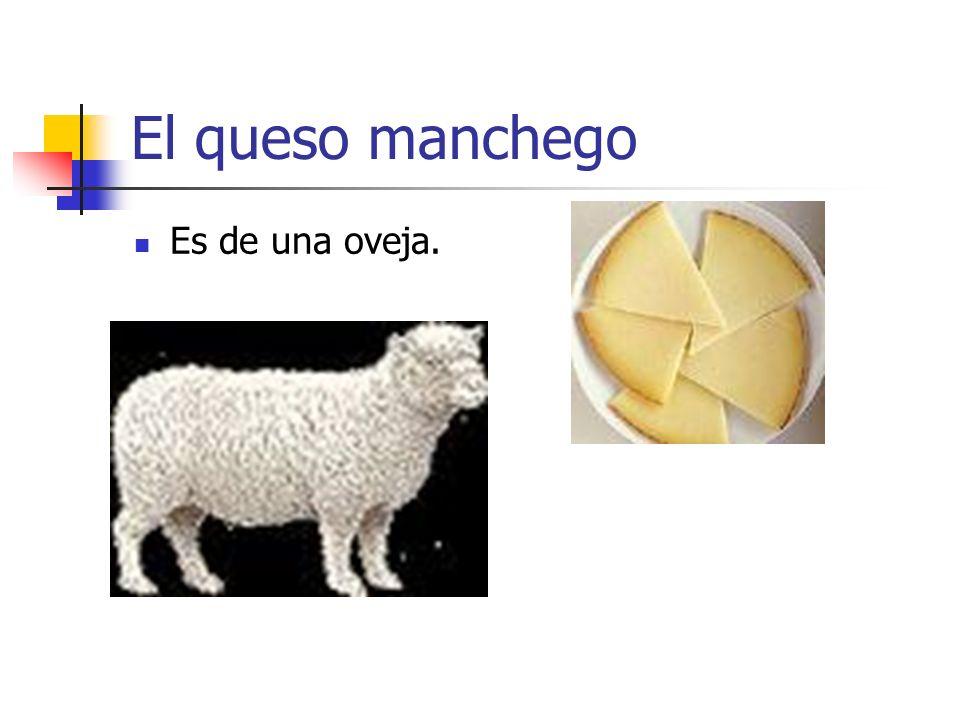 El queso manchego Es de una oveja.