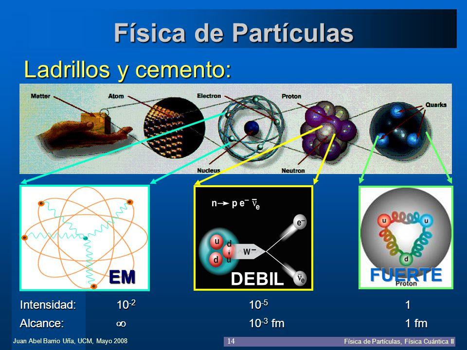 Física de Partículas Ladrillos y cemento: FUERTE EM DEBIL