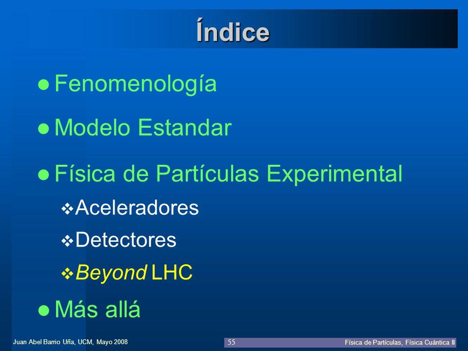 Índice Fenomenología Modelo Estandar Física de Partículas Experimental