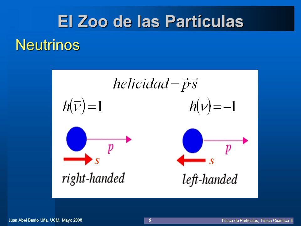 El Zoo de las Partículas