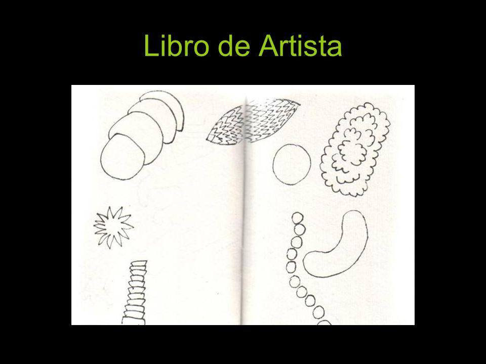 Libro de Artista