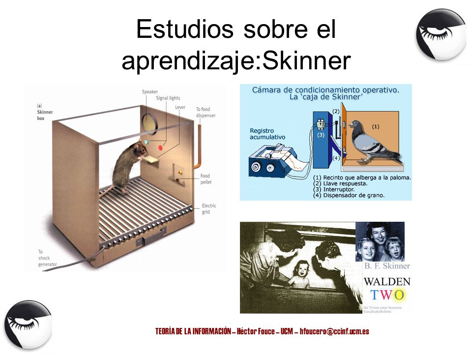 Estudios sobre el aprendizaje:Skinner