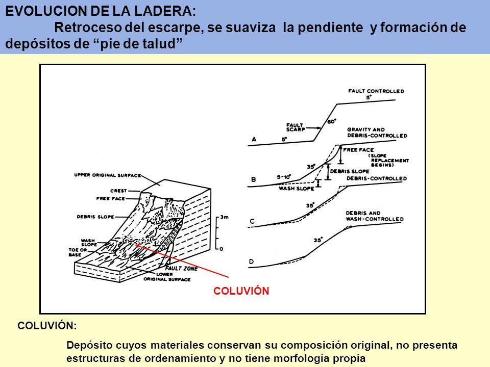EVOLUCION DE LA LADERA: