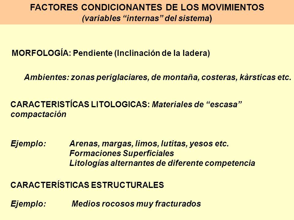 FACTORES CONDICIONANTES DE LOS MOVIMIENTOS