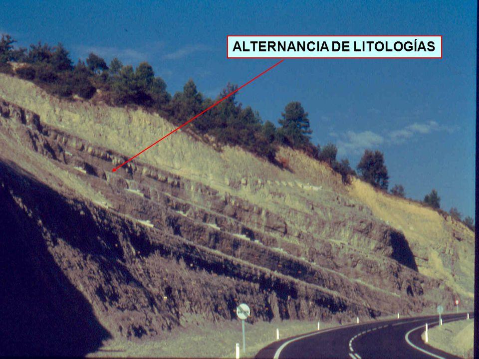 ALTERNANCIA DE LITOLOGÍAS