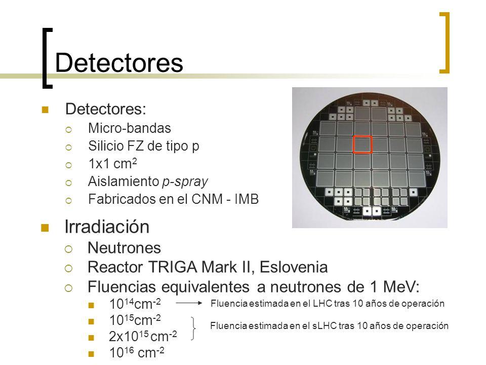 Detectores Irradiación Detectores: Neutrones
